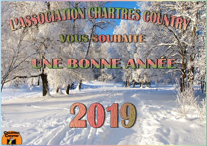 Carte de bonne annee 2019 chartres country 877 x 620